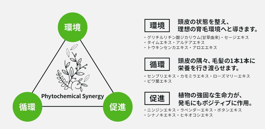 サイクル-CYCLE- ファイトケミカル