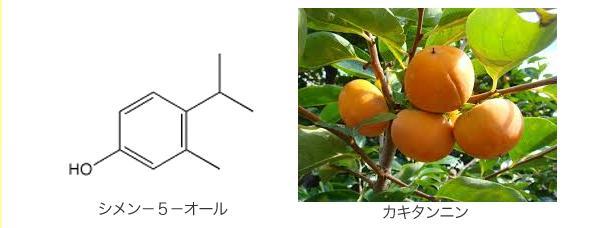 トリムクール(TRIMCOOL) 殺菌&消臭